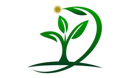 Eco Green Success icon logo vector illustration. Illustration