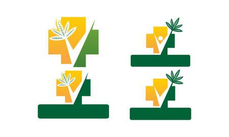 Herbal medicine icons Template Set Vector illustration.