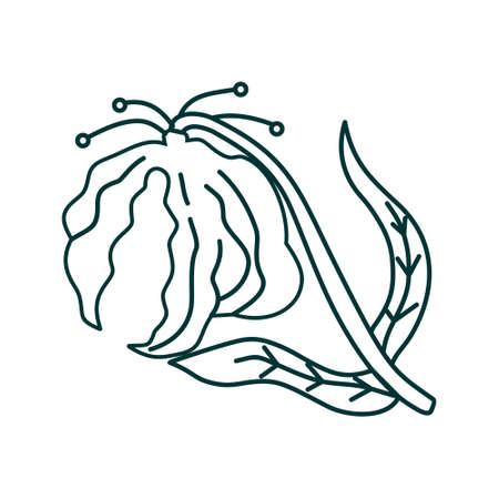 Flower Leaf Illustration Design Template Vector Imagens - 124372595