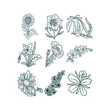 Flower Leaf Illustration Design Template Vector Imagens - 124372705