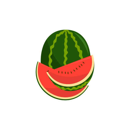 Watermelon Fruit and pieces Illustration