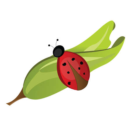 Ladybug on a Leaf vector illustration