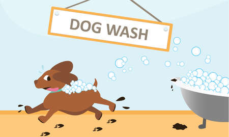 Runaway Dog Wash from Bubble Bath vector illustration