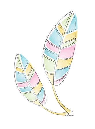 Colourful Watercolour Feathers vector illustration Çizim