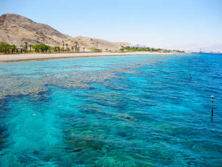 Eilat, Red Sea, Israel photo