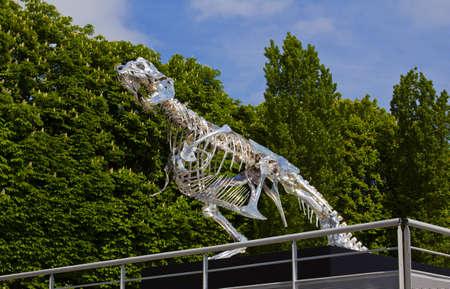seine: Dinosaur skeleton made of metal in Paris on the Seine