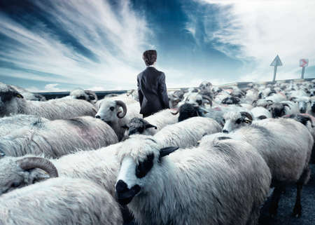 Businessman standing in the middle flock of sheep walking in opposite direction. Out of the box concept. Stand out from the crowd. Stockfoto