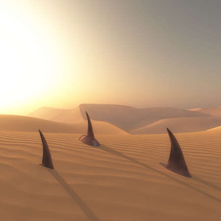 Sharks under sand in the desert. The concept of global warming
