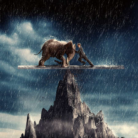 Man and an elephant pushing eachother and balacing on top of a peak in the rain. Stock Photo