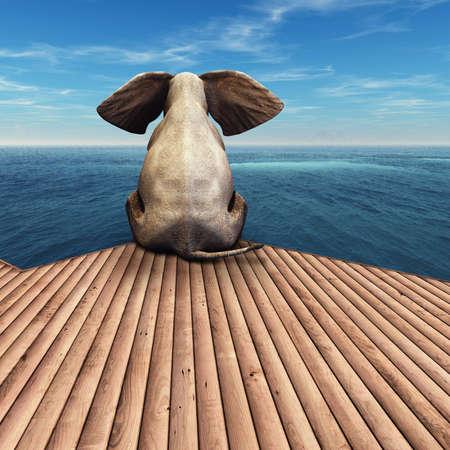 Elephant admiring the view at the ocean resort. Banco de Imagens