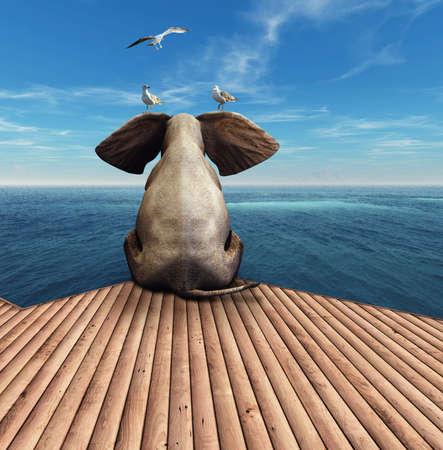 Elephant admiring the view at the ocean resort. Фото со стока