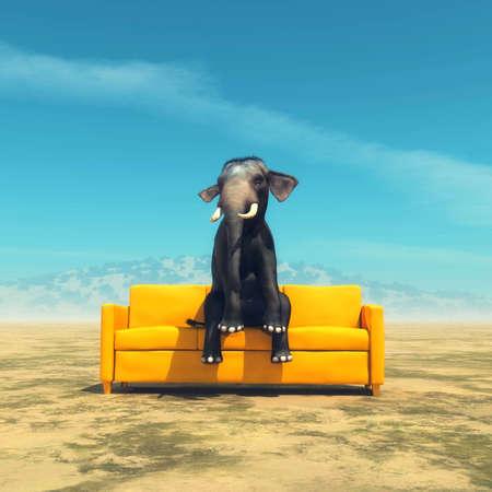 Éléphant assis sur un canapé en plein champ. Banque d'images