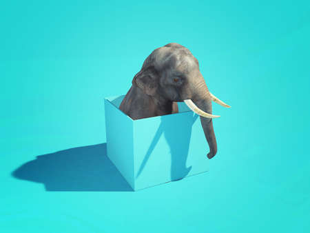 Elephant with his head out of the box . Think outside the box concept . This is a 3d render illustration . Stockfoto