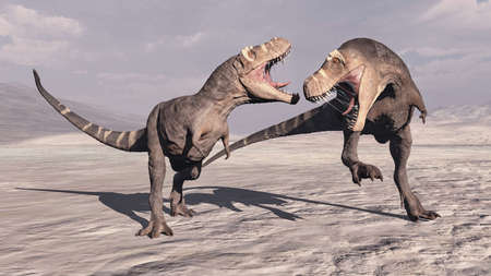 T rex fight in the desert . This is a 3d render illustration