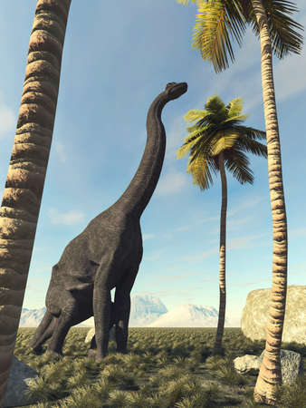 Brachiosaurus in the jungle looking at a palm tree. This is a 3d render illustration.