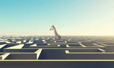 Giraffe above the labyrinth . Overcome difficult problems . This is a 3d render illustration .