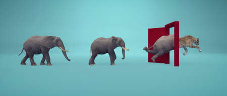 Elephants entering a door and gets out as a cheetah . Changing mindset and different approach concept . Life changing decision and new opportunities . This is a 3d render illustration . 免版税图像