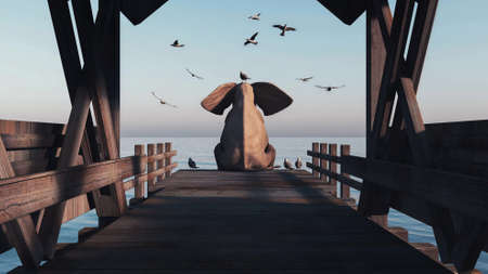 Elephant sitting on a pontoon with seagulls around . This is a 3d render illustration .