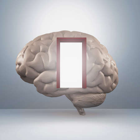 Human brain with a door . This is a 3d render illustration . Reklamní fotografie