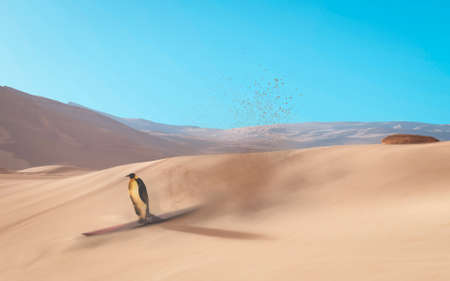 Penguin surfing in the desert . Global warming concept . This is a 3d render illustration .