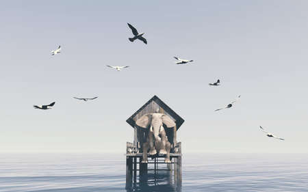 Elephant on a wooden deck and seagulls flying around . This is a 3d render illustration .