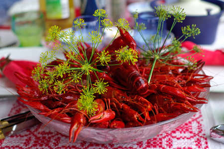 Crayfish in August is a typical Swedish tradition photo
