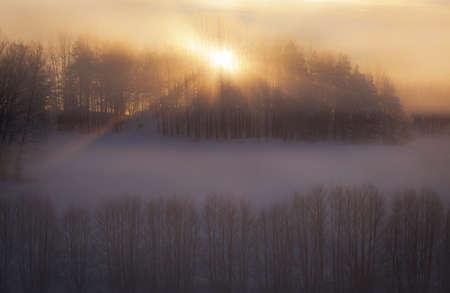 winter sunrise: Winter view in sunrise Stock Photo