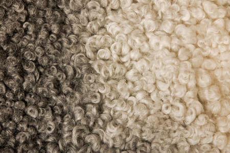 sheepskin: piel de carnero