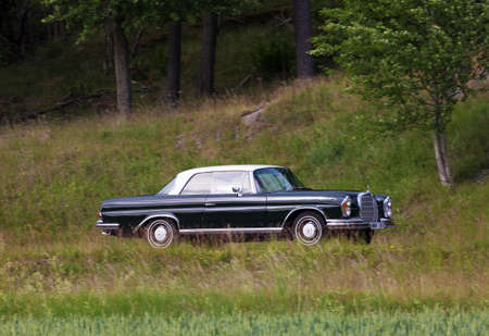 frontline: TROSA SWEDEN June 23 2016. MERCEDES BENZ 250 SEC year 1965.