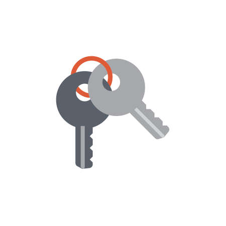 Vector icon or illustration showing access with two keys in material design style