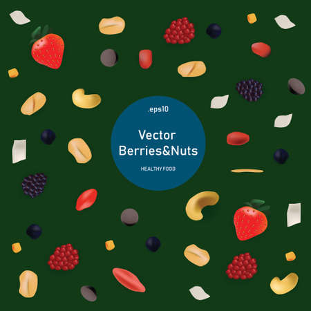 Vector illustration set in realism style about healty and eco food. Nuts and berries on green background and top view