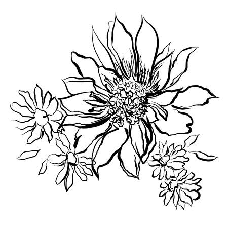 Blumen, Schwarz Lackiert Umriss. Kinderzeichnung, Färbung ...