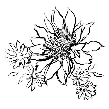 Flowers painted black outline on the white background childrens flowers painted black outline on the white background childrens drawing coloring watercolor mightylinksfo