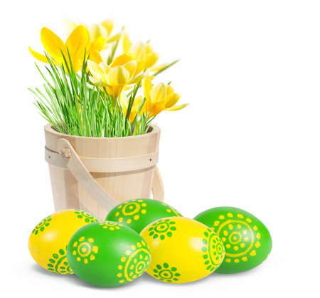 Easter eggs and crocuses isolated on white background. photo