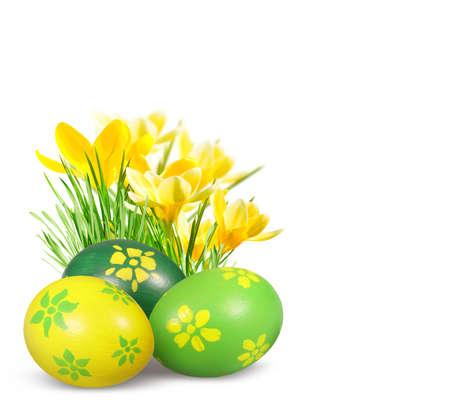 huevos de pascua: Pintado a mano los huevos de Pascua y los azafranes aisladas sobre fondo blanco