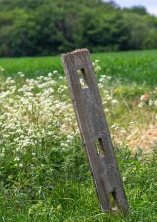 An old wooden fence post with holes in and leaning over with field and meadow in the background. Banque d'images