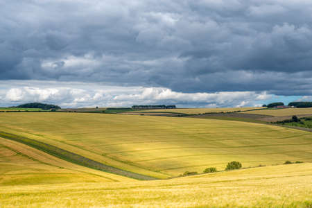 Colourful landscape view over rolling hills and wheat fields on a sunny day with dark clouds.