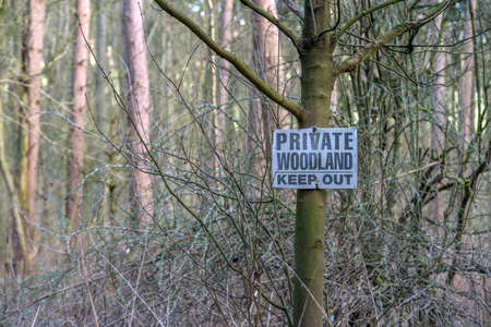 A wooden black and white sign attached to a large tree with the words private woodland keep out on it.