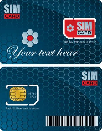 Sim card with carrier vecor template Vector