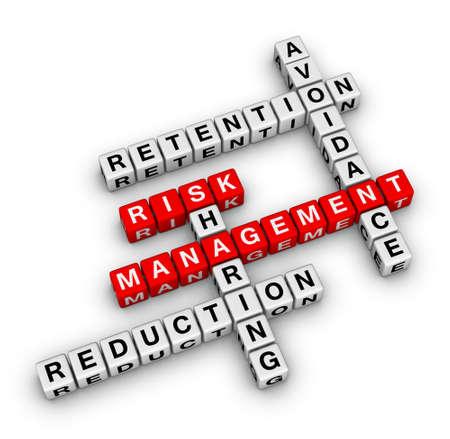 risk management 3D crossword (new business concept) Archivio Fotografico