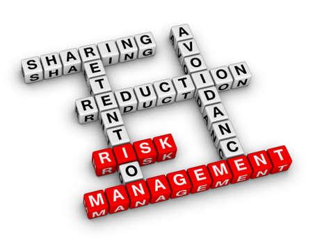 risico beheer 3D Kruiswoordraadsel (nieuwe business concept)