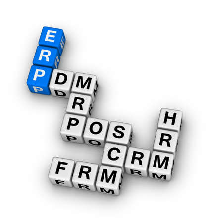 ERP (Enterprise Resource Planning) System crossword puzzle photo