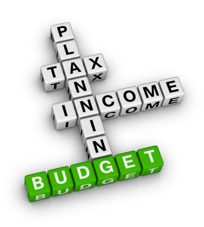 family budget: budget planning cubes crossword puzzle