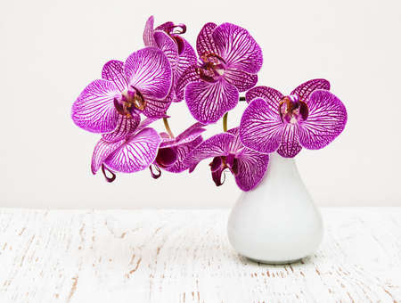 vases: purple orchid flowers in vase on a wooden table