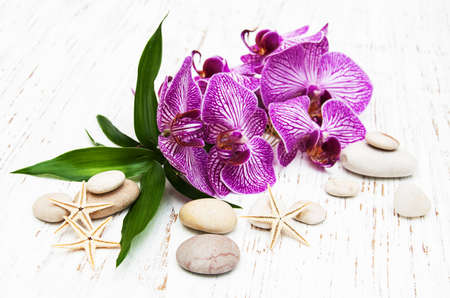 massage stone: Orchids and massage stone on a old wooden background