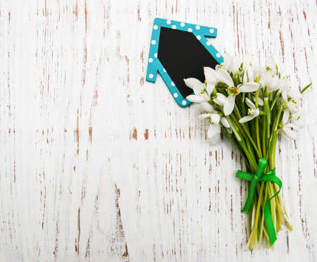 spring snowdrops with board on a wooden background photo