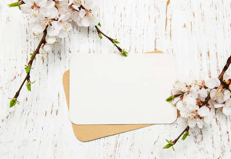 spring apricot blossom with card on a wooden background Archivio Fotografico