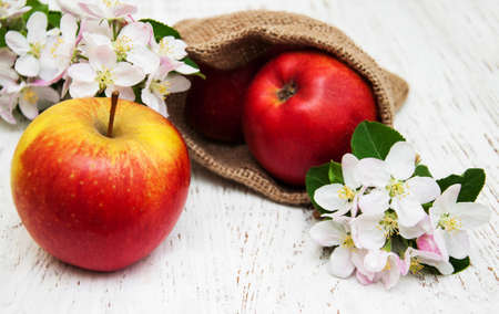 apple sack: Sack with apples  and apple tree blossoms on a  wooden table Stock Photo