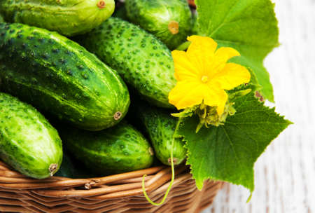 Fresh cucumbers on a old wooden background Imagens - 45590516