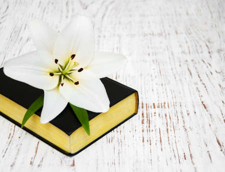 easter lily: easter lily and bible on a old wooden background Stock Photo